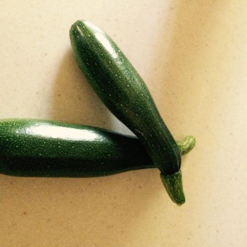 Zucchini for blog